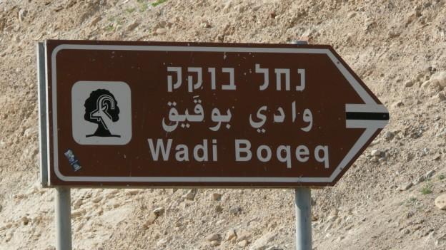 Wandern im Wadi Boqeq